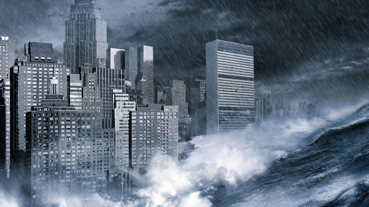 essay on tsunami disaster in japan