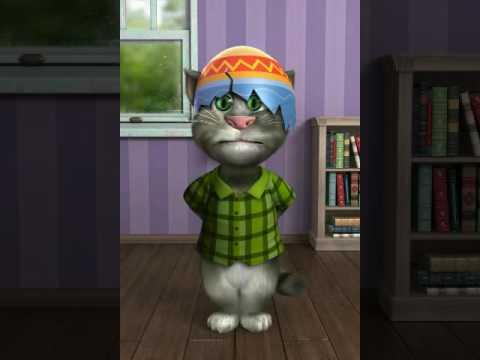Konuşan Kedi Tom Şimdi Dans Zamanı - hapşırma bekle tomm talking konuş