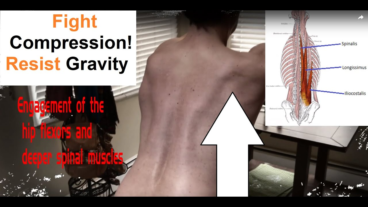 Introduction into core muscles and spine stabilization - YouTube