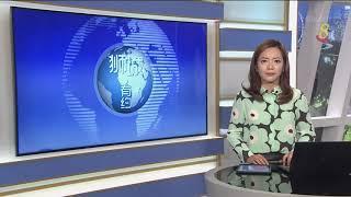 【冠状病毒19】本地新增1426起病例 累计病例破8000