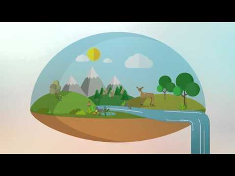 Askham Bryan HE Animation Countryside Management