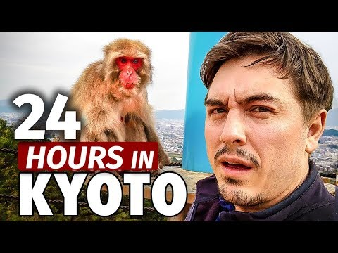 24 Hours in Kyoto | Japan's Best Monkey Park