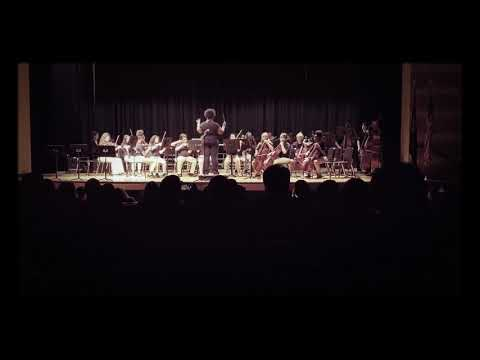 Castle Heights Middle School Orchestra
