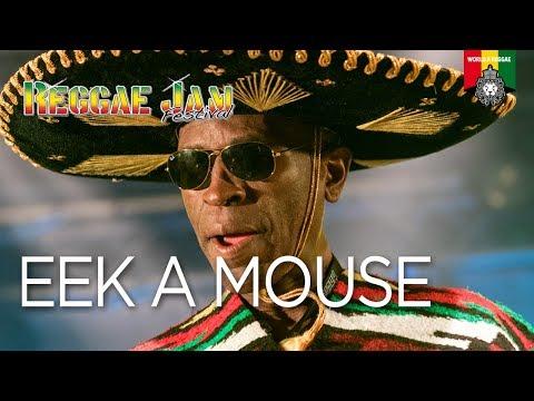 Eek A Mouse Live at Reggae Jam 2017