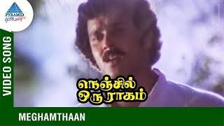 Nenjil Oru Raagam Movie Songs | Meghamthaan Video Song | Rajeev | Saritha | Thiagarajan | T Rajendar