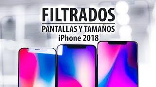 Filtradas las pantallas y tamaños del iPhone 2018