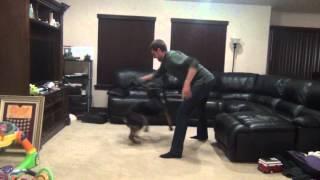 Spinning Rottweiler