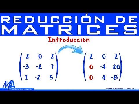 Reducción De Matrices | Introducción | Gauss Y Gauss Jordan