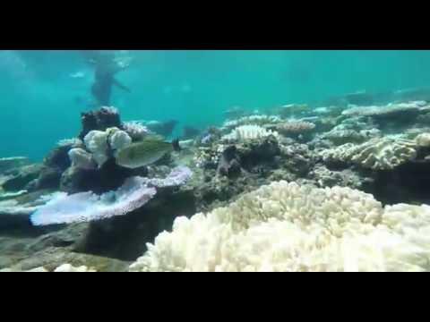 Far North Queensland : Live a Life Worth Living