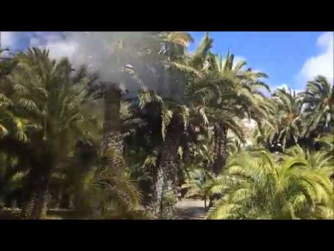 Gran Canaria-Botanikus kert-Jardín Botánico Viera y Clavijo 2017.03.16.
