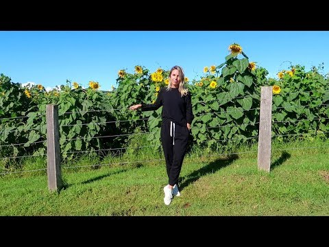 TRAVEL VLOG: BYRON BAY