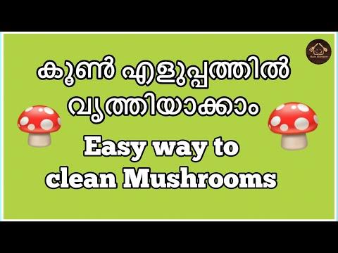 How to clean mushrooms 🍄 കൂൺ എങ്ങനെ വൃത്തിയാക്കാം