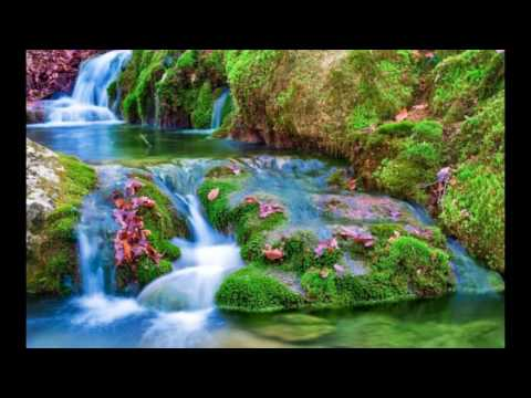 Best Beautiful Nature Wallpapers Images Photos Pics Video - YouTube
