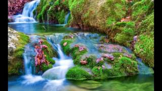 Best Beautiful Nature Wallpapers Images Photos Pics Video