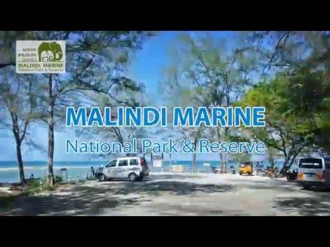Malindi Marine Park & Reserve | KENYA