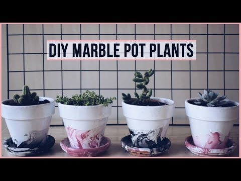 DIY Marble Pot Plants | Easy and Affordable