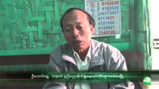 RFA Burmese on 12 Dec 2013,Organic Farming in Myanmar