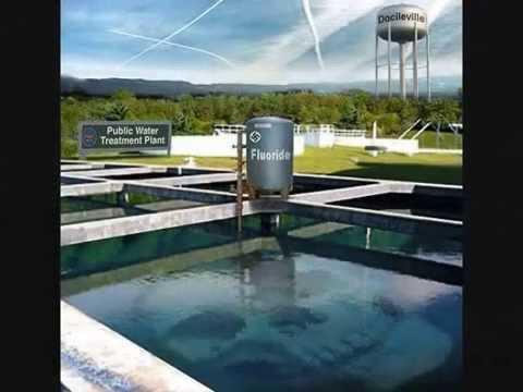 Fluoride in Drinking water harmful?
