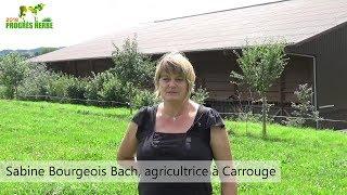 Progrès herbe: Pâture bien gérée, coûts de production maitrisés (Sabine Bourgeois)