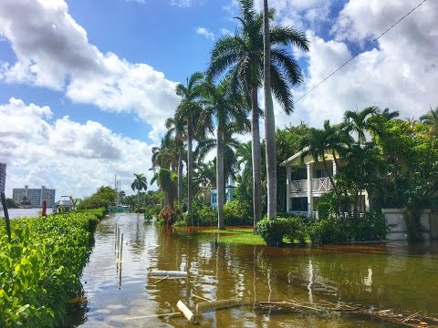 King Tide Climate Change Flooding Delray Beach Florida
