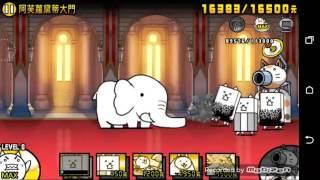 貓咪大戰爭台版 3星15 5 阿芙蘿黛蒂大門 狂亂貓攻略