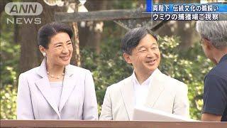 茨城県ご訪問の両陛下 ウミウの捕獲場を視察(19/09/30)
