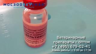 Вакцинация кошек Мультифел 4 инструкция(Вакцина для кошек Мультифел 4 инструкция ветеринарные препараты Мосзооветснаб., 2016-10-28T09:29:23.000Z)