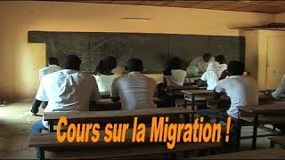 COURS SUR LA MIGRATION - NIGER