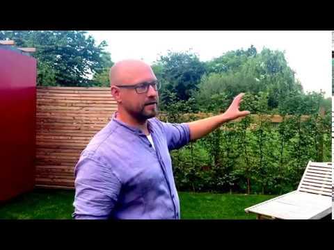 Gartengestaltung wie sie in kleinen g rten gekonnt for Gartengestaltung youtube