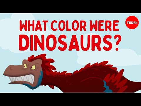 Video image: How do we know what color dinosaurs were? - Len Bloch