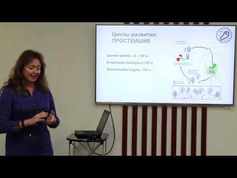 Лекция: молекулярная диагностика паразитов кишечника