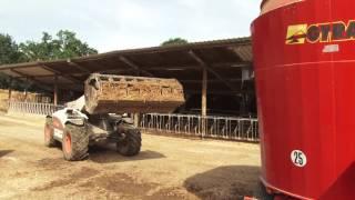 Présentation de l'élevage bovin du centre de formation de Canappeville