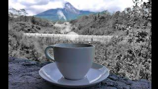 Download story wa kopi pagi hari   awali pagimu dengan secangkir kopi