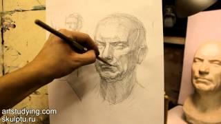 Обучение рисунку. Портрет. 14 серия: построение гипсовой головы и вопросы светотени