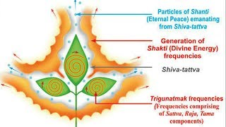 भगवान शिव को बिल्व पत्र क्यों हैं इतने प्रिय, जानकर हैरान हो जायेंगे आप   Indian Rituals