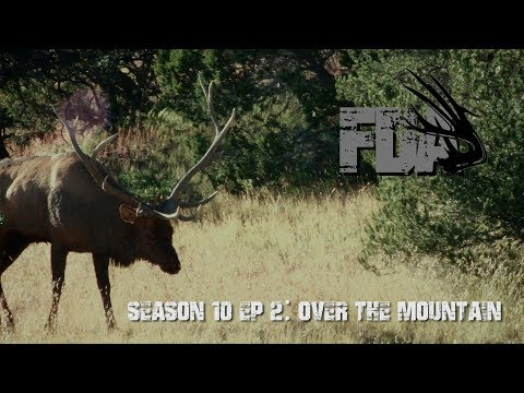 "FDA Season 10 Episode 2: ""Over the Mountain"""