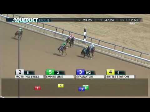 Empire Line - 2018 - The Damon Runyon Stakes