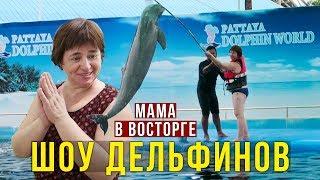 Родители в Дельфинарии - Мама Плавает с Дельфином, Еда в Таиланде - пробуем Гребешки на Море