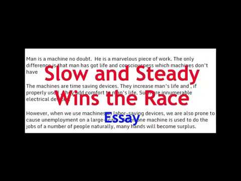 essay on slow and steady wins the race