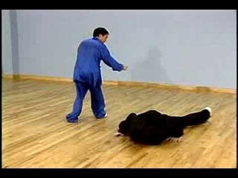 Xing Yi Quan (Hsing I Chuan) Kung Fu