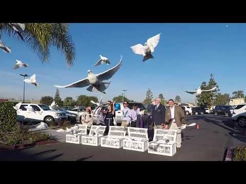 EyeGen Vision Center Optometry Huntington Beach  (714) 841-9888