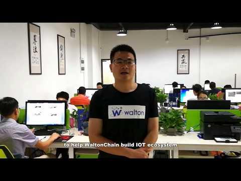 Meet the team: Lin Herui