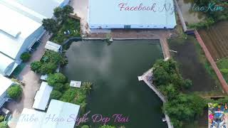 Toàn cảnh xung quanh nhà Hảo Style   khóm 5 Châu Thành  Thanh Trì Đa Lộc Châu Thành Trà Vinh #HSDT