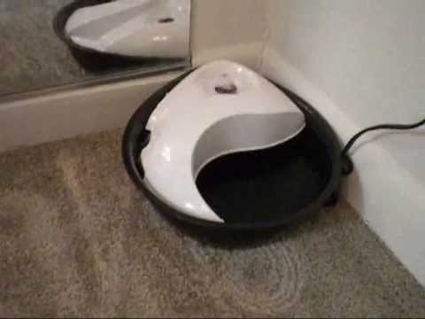 Plastic Drinking Fountain Youtube