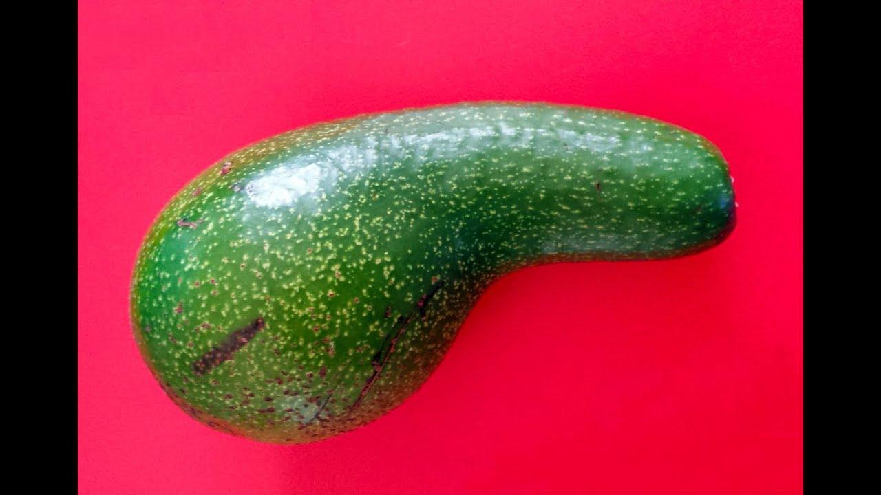 penis shaped fruit