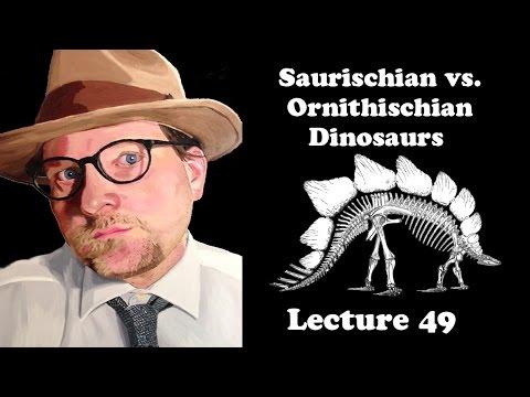 Lecture 49 Saurischian vs. Ornithischian Dinosaurs