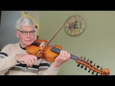 Martin's viola d'amore