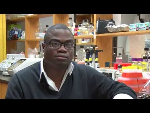 RIT Expert: André Hudson, associate professor, Thomas H. Gosnell School of Life Sciences