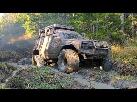Nissan Safari Mitsubishi Jeep Грязевой размаслай. Шишкевич трофи часть 2