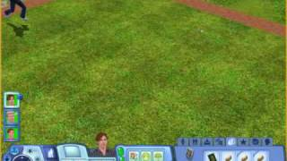 How to get the money tree part 2 of 4 (Sims 3)